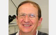Professor Gerard Nash