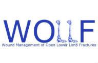Wollf study logo