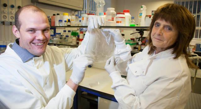 Professor Liam Grover and Professor Ann Logan with the biomembrane